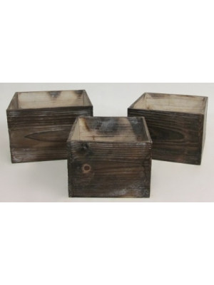 Wood Container Square x3