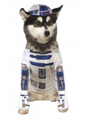 R2-D2 Small - Pet Costume