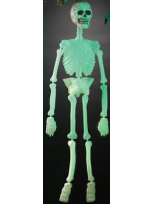 "36"" GID Molded Skeleton in PBH"