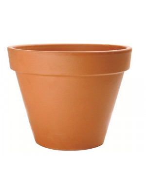 "Terracotta Pot Std 10 1/2"" Dia"